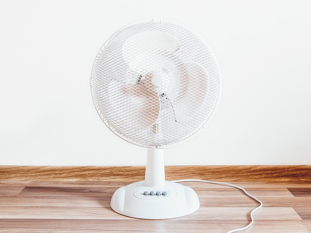 Keep your cool this summer: Which fan is best?