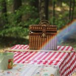 picnic table - free family day out - dynes