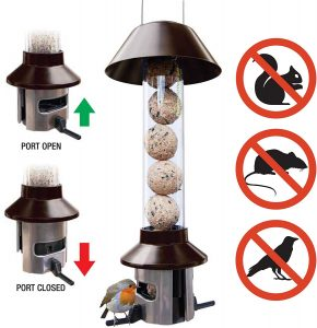 Roamwild Squirrel Feeder
